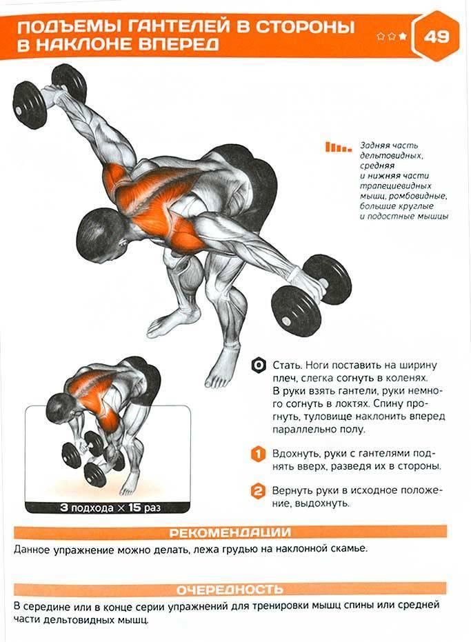 Боковые выпады с гантелями: техника выполнения, какие мышцы работают
