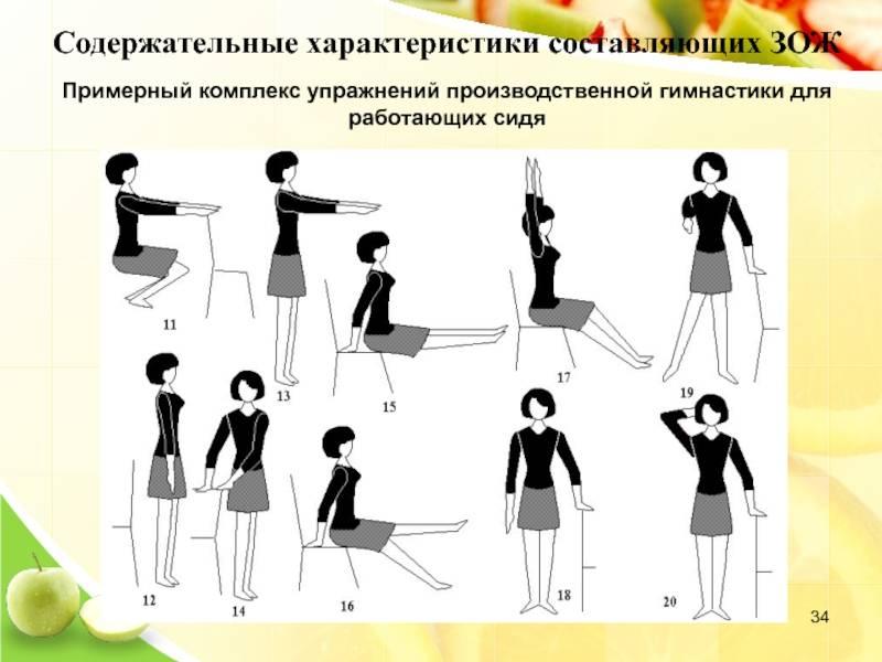 Производственная гимнастика. реферат. педагогика. 2008-06-24