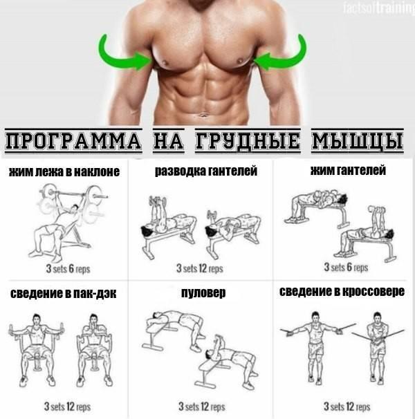 Зожник     программа для полноценной проработки грудных мышц