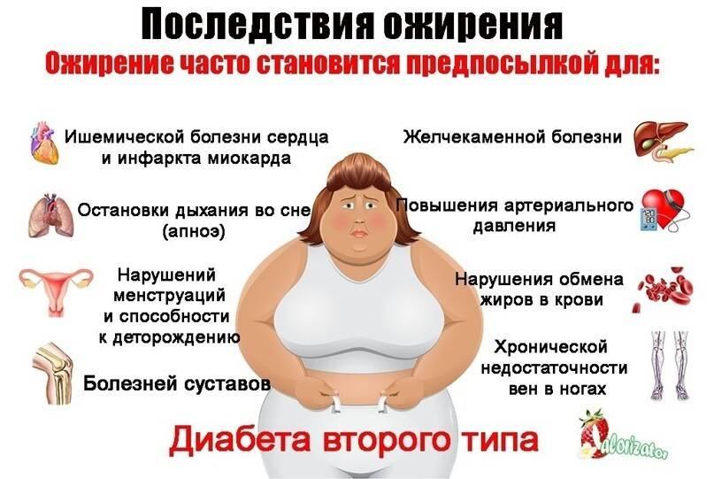 «емтолько тыщу ккал, ноникак нехудею!» эксперт отом, почему неполучается сбросить вес