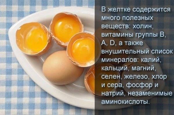Куриные яйца: польза и вред, чем полезны для организма