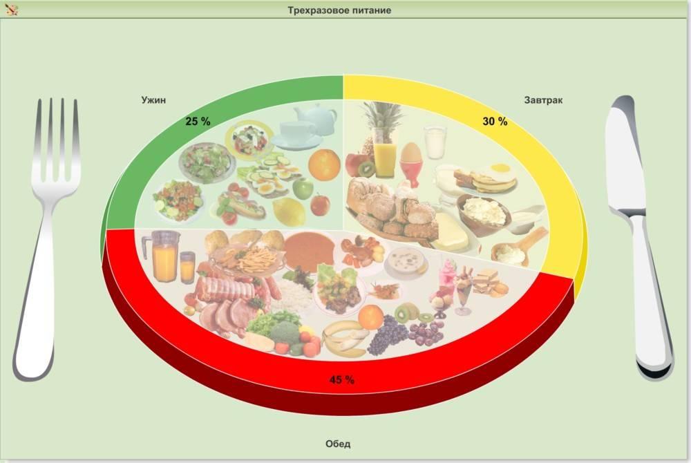 Правильное распределение пищи. все от а до я!