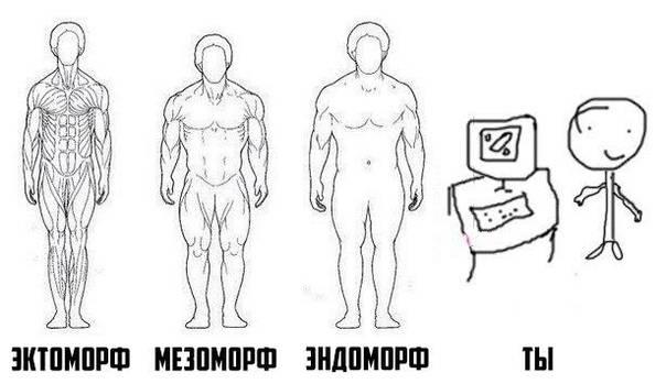 Соматотипы: мезоморф, эндоморф, эктоморф. как правильно тренироваться?