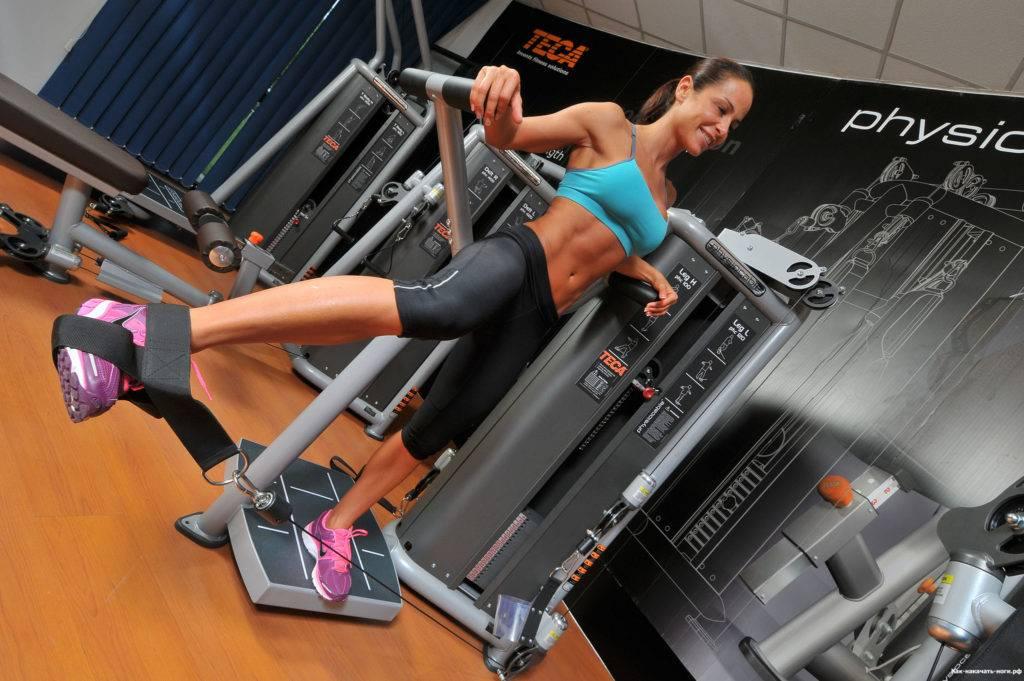 Тренажеры для спины — как укрепить и накачать мышцы спину в тренажерах