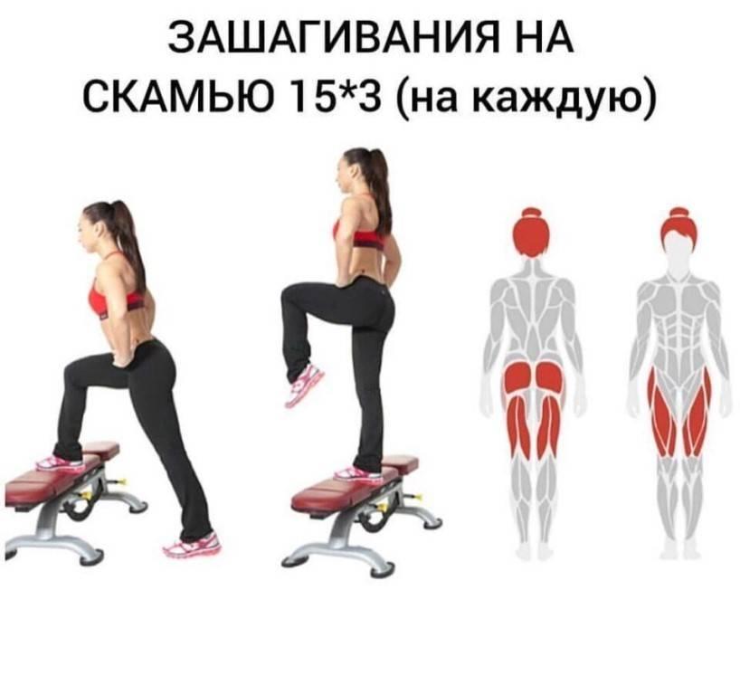 Упражнения на нижнюю часть ягодиц: округляем низ попы