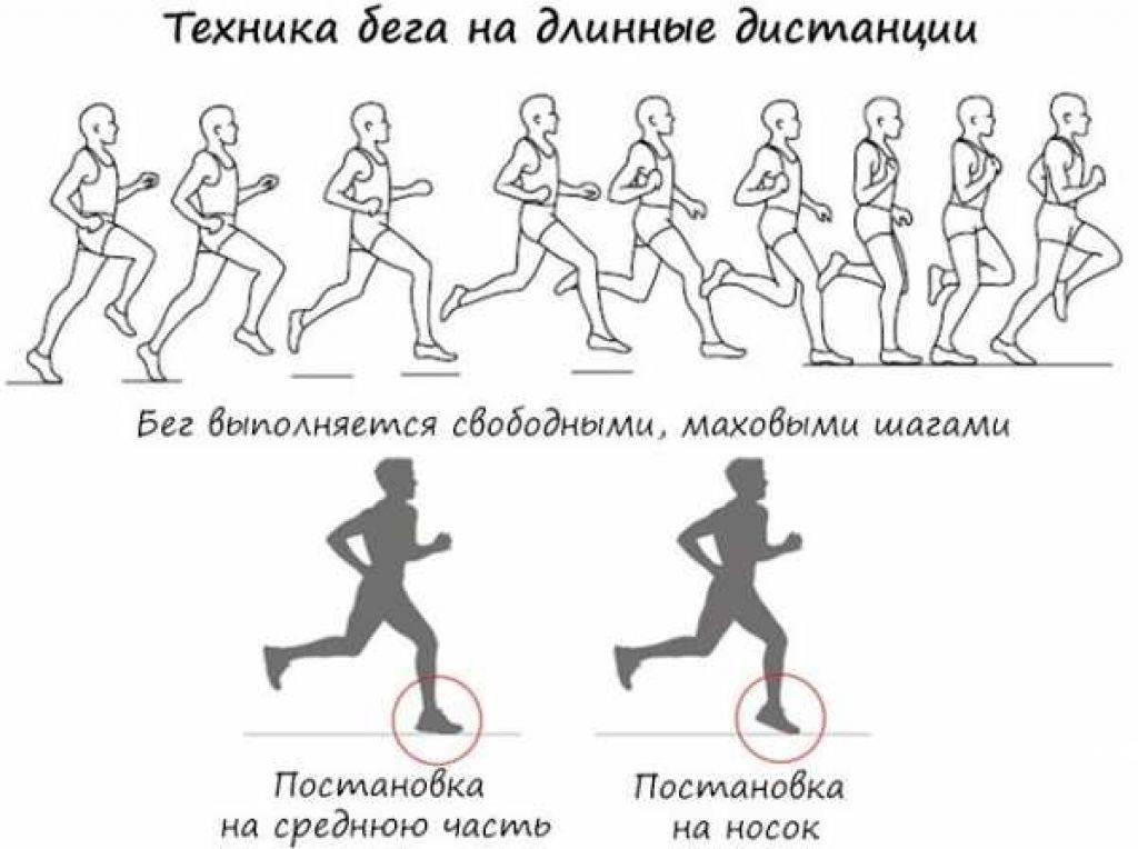 Бег для похудения: сколько нужно бегать, интервальный, на месте, на беговой дорожке, по лестнице, трусцой