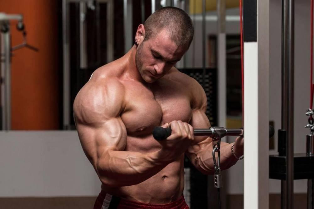Как подобрать рабочий вес для тренировок   musclefit