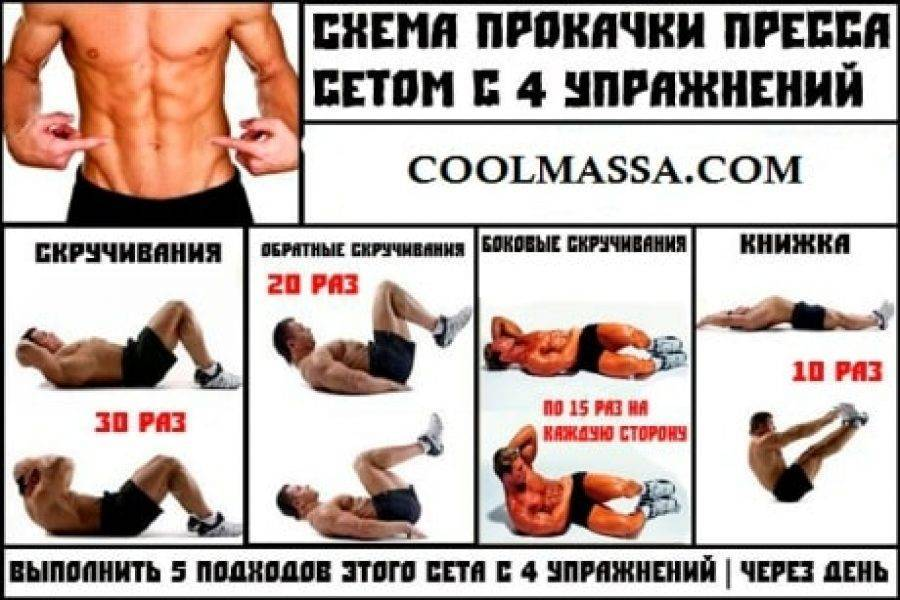 Упражнения для косых мышц живота для мужчин в домашних условиях