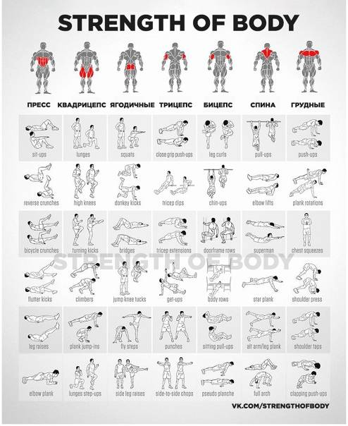 Самый эффективный full body комплекс упражнений на все группы мышц