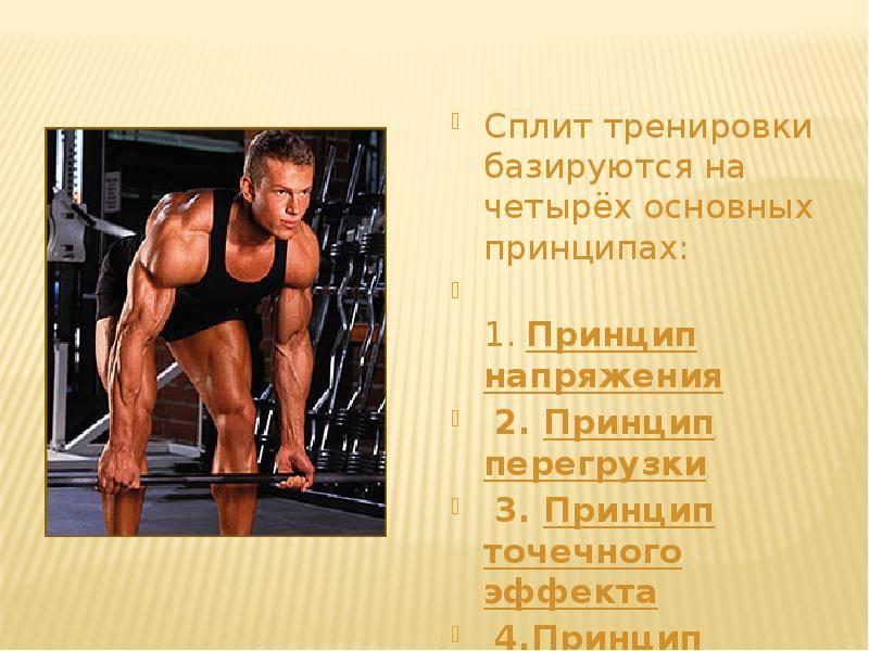Программа базовых тренировок