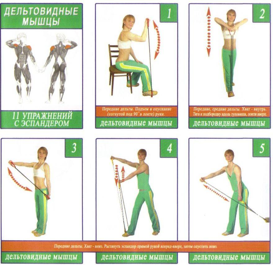 Упражнения с эспандером в домашних условиях, для мужчин и женщин