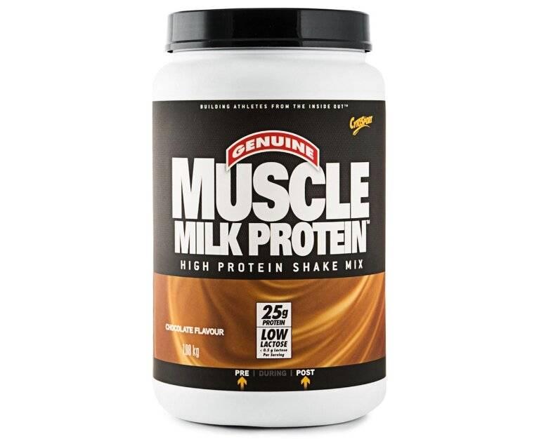 Какой протеин лучше для набора мышечной массы: рейтинг протеинов