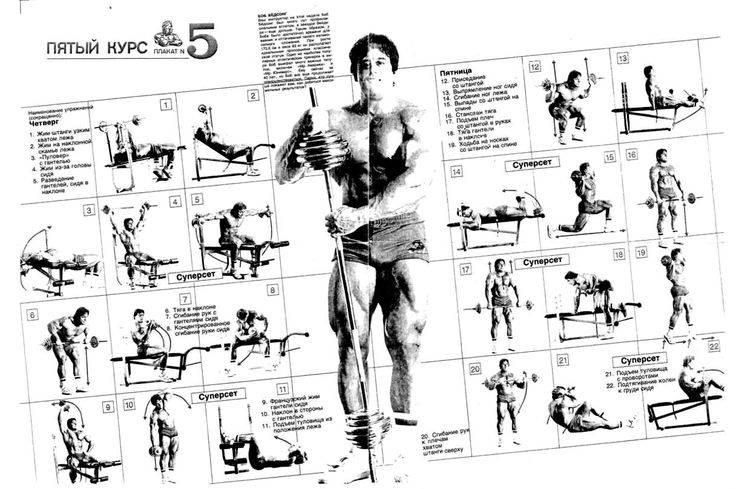 Программа тренировок для начинающих по системе джо вейдера - atletizm.com.ua