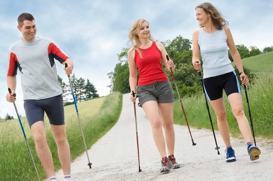 Степпер (gymbit): скандинавская ходьба для дома, инструкция, цена, видео | sh