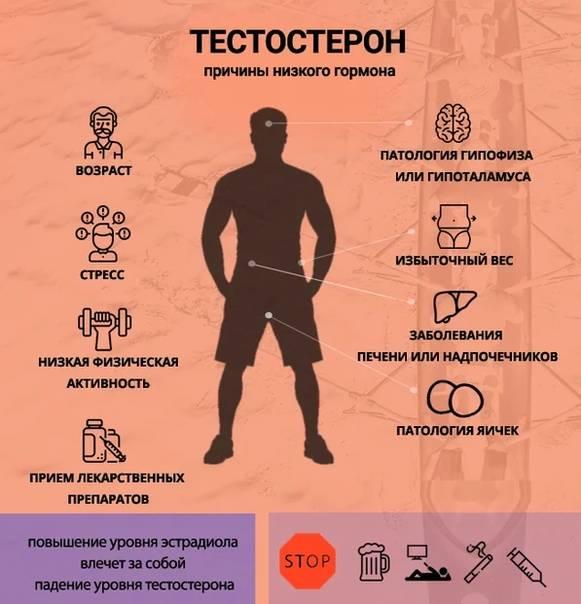Как повысить уровень тестостерона? | компетентно о здоровье на ilive