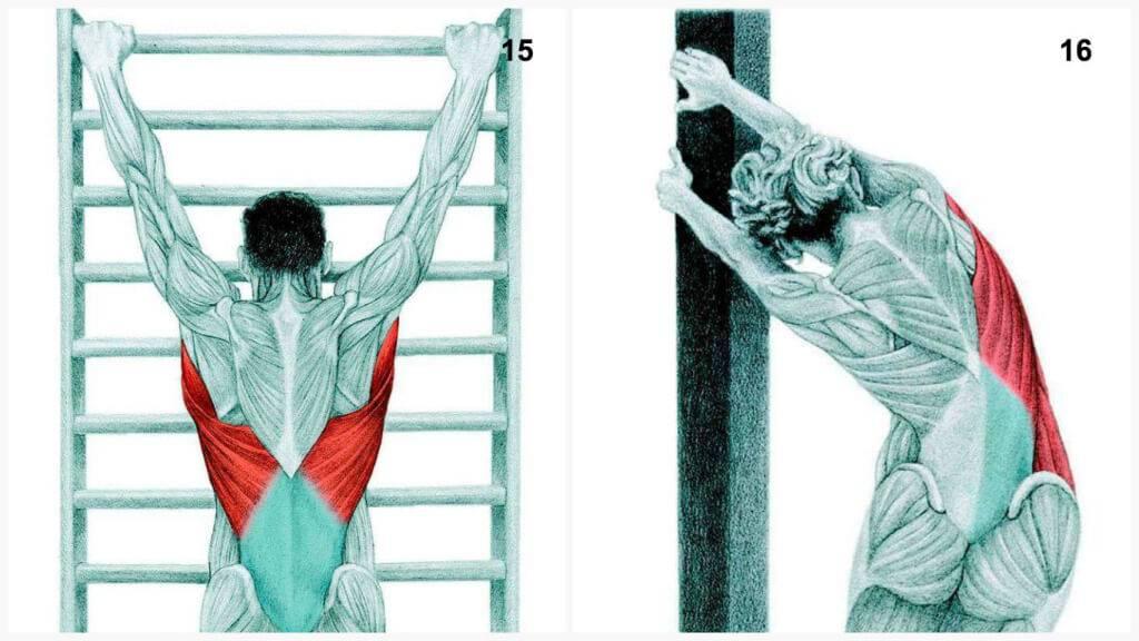 Растяжка спины