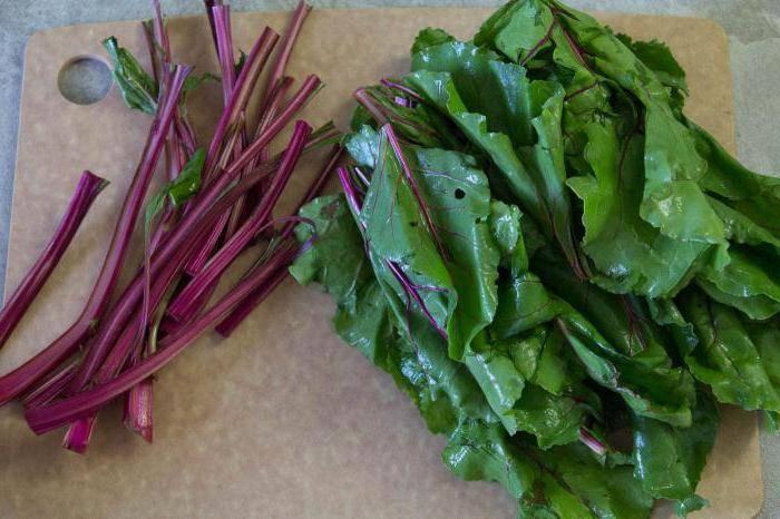 Рецепты салат со свекольной ботвой