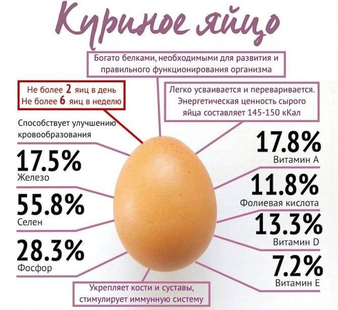 Яичный белок: состав, калорийность, польза   food and health