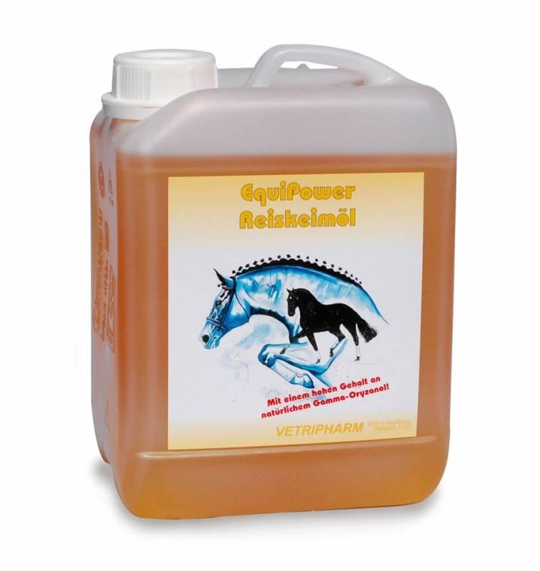 Как водоросли из питания для лошадей превратилась в популярный БАД?