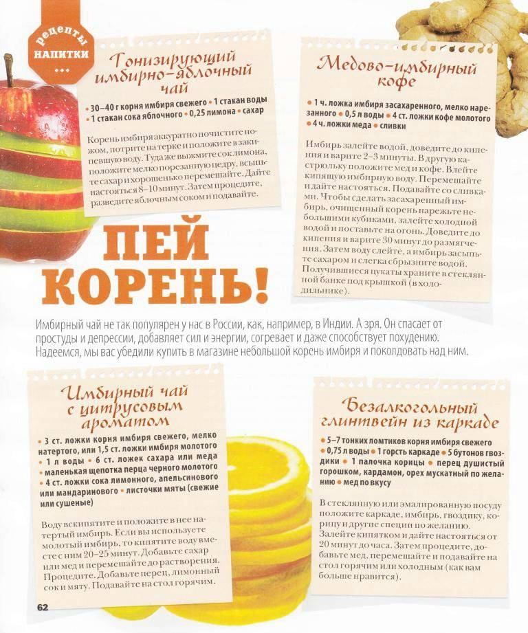 Имбирь: свойства и польза для организма | food and health