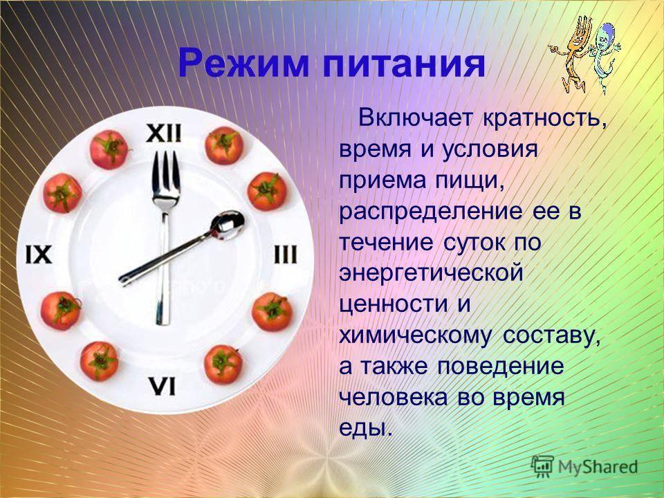 Режим правильного питания здорового человека: оптимальное расписание часов приема пищи в день, план для взрослых и детей, когда, как, какие блюда правильно есть