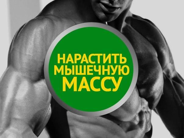 Почему не растет мышечная масса – что делать, рекомендации для тренировок