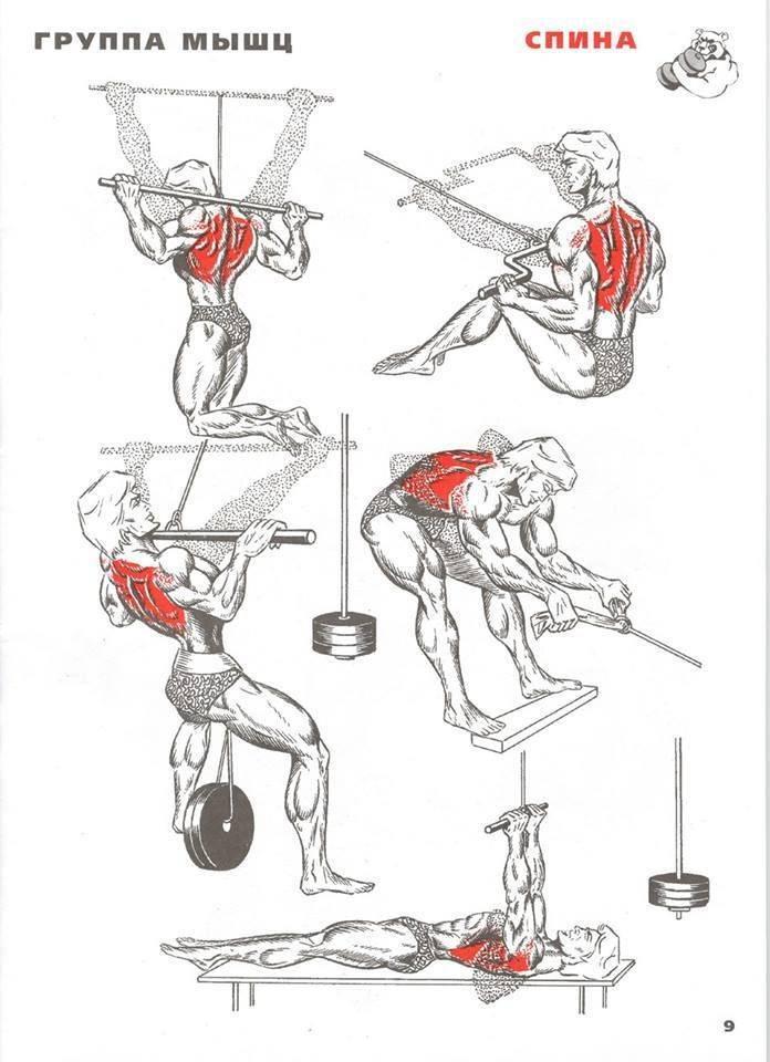 Как накачать спину | musclefit