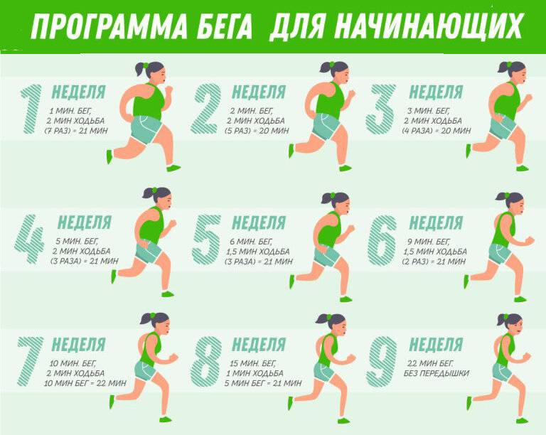 Бег для похудения. как исколько нужно бегать, чтобы похудеть