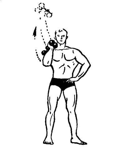 Эффективные тренировки с гантелями