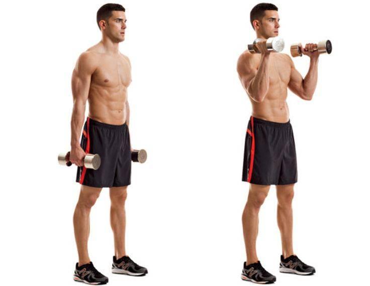 Строгий подъем на бицепс. шокируй мышцы рук.