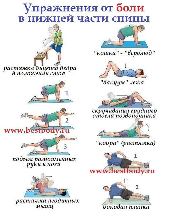 Упражнения для поясницы в домашних условиях и тренажерном зале