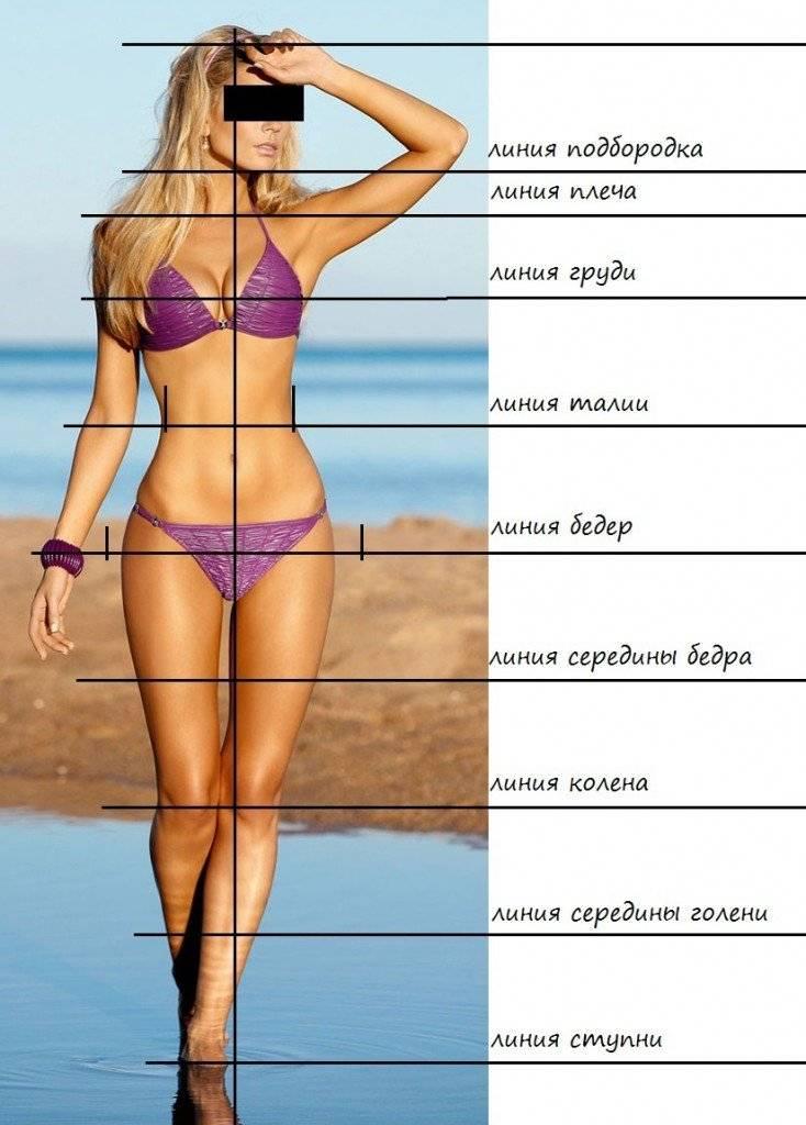 Идеальные пропорции тела