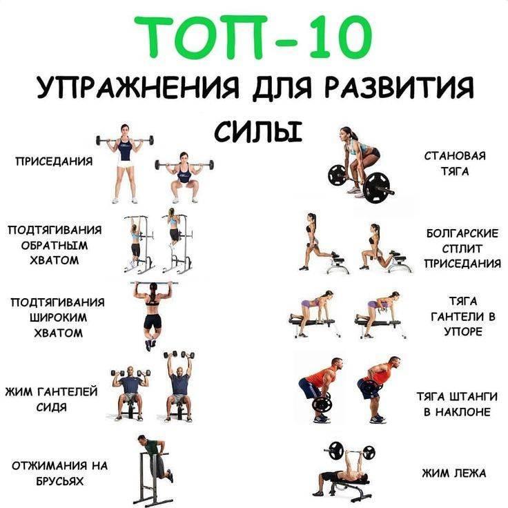Энергозатратные упражнения в тренажерном зале