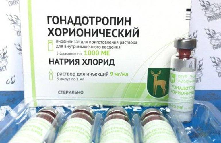 Хорионический гонадотропин для мужчин