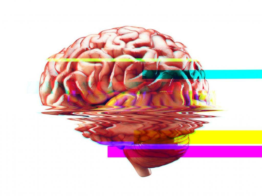Что такое нейромышечная ментальная связь мозг-мышцы