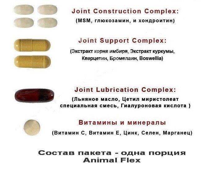 Animal flex от universal nutrition: состав, цена, как принимать?