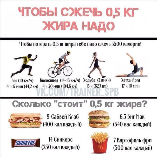 Упражнения и тренировки для сжигания жира на животе — гид
