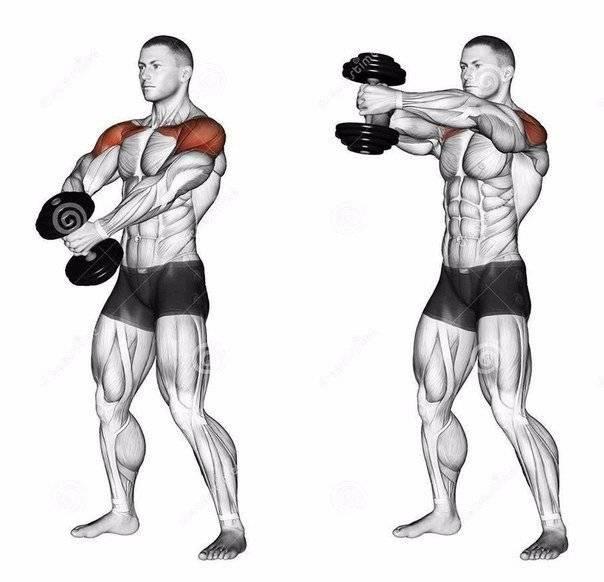 Как накачать мышцы быстро и правильно мужчине или девушке