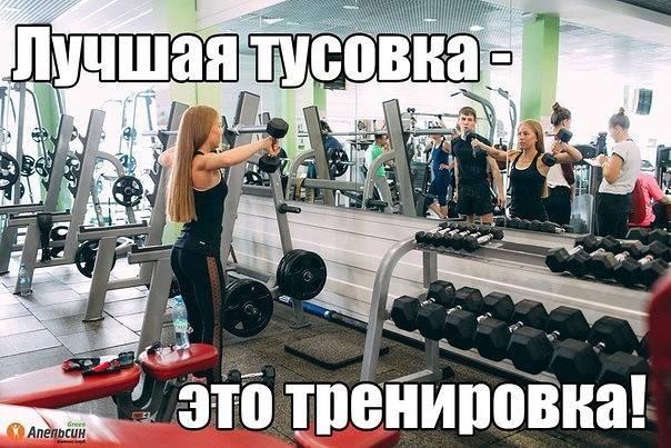 Что делать если лень идти на тренировку. как побороть лень и начать заниматься спортом.   фитнес для похудения