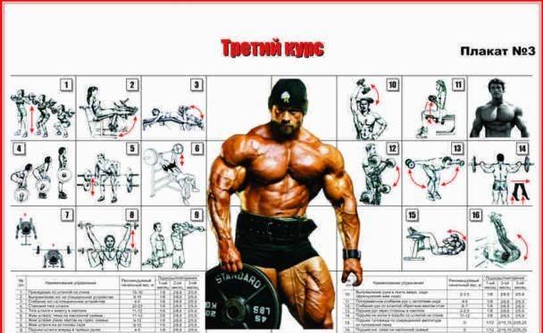 Джо вейдер - система строительства тела (глава 21 атлетизм для других видов спорта)