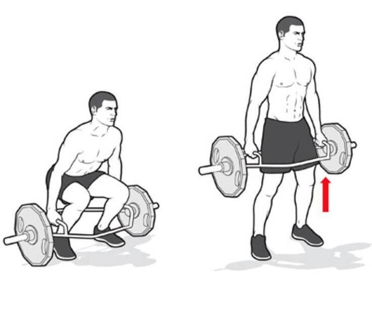 Становая тяга сумо: особенности и вариации упражнения, техника выполнения и работа мышц во время тренировки, правильная экипировка и меры безопасности