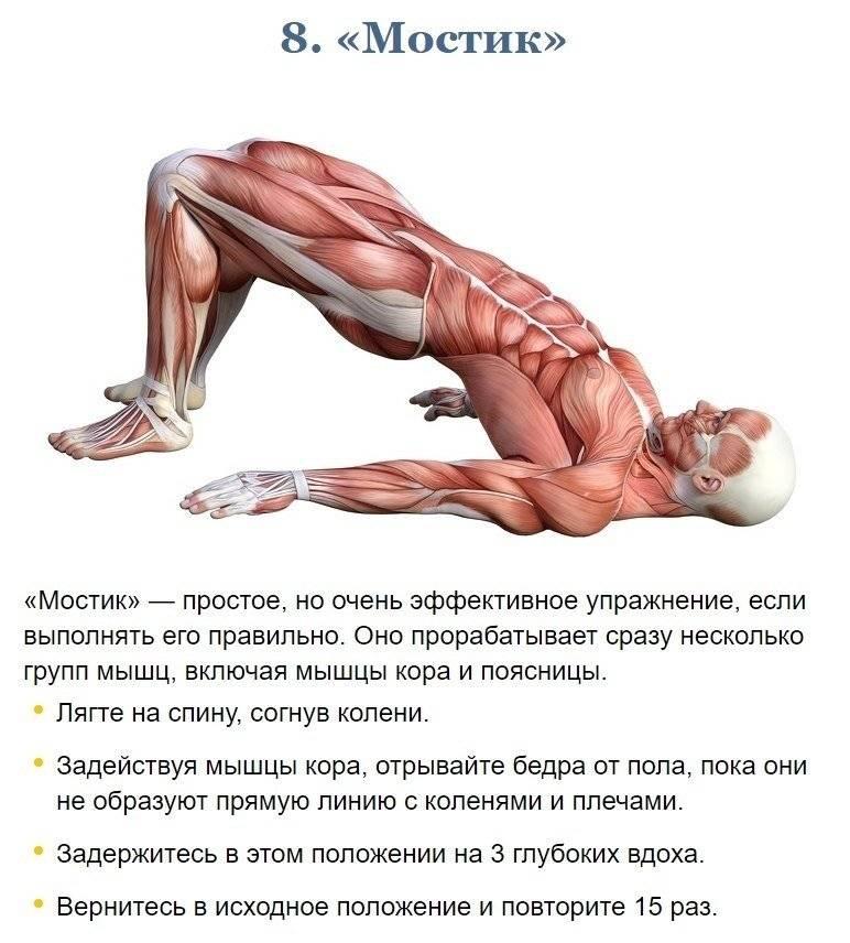 Мышцы кора: зачем нужны, 30 упражнений + план (фото)