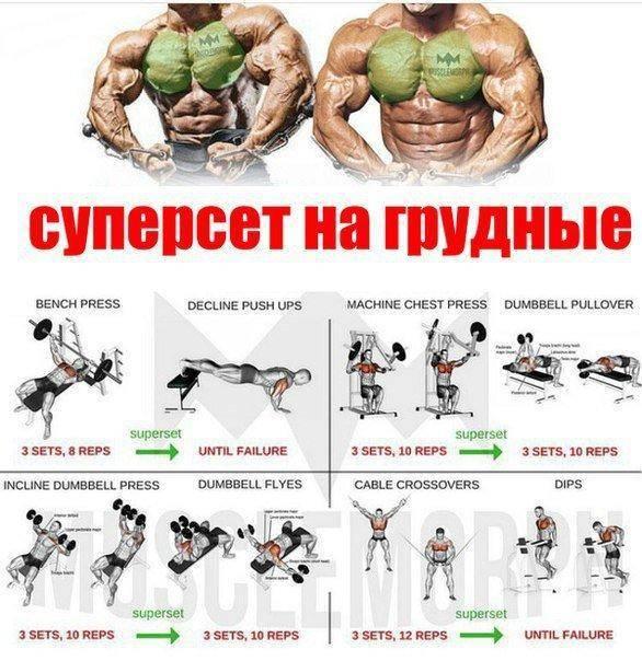 Тренировка спины в тренажерном зале для девушки | musclefit