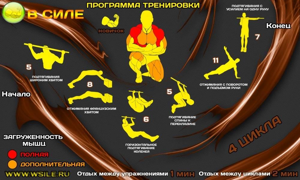 Кроссфит тренировки для начинающих: упражнения и примеры комплексов