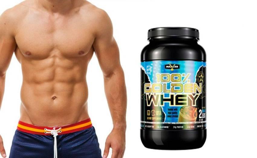 100% вей протеин/100% whey protein nutrend, 2820 гр