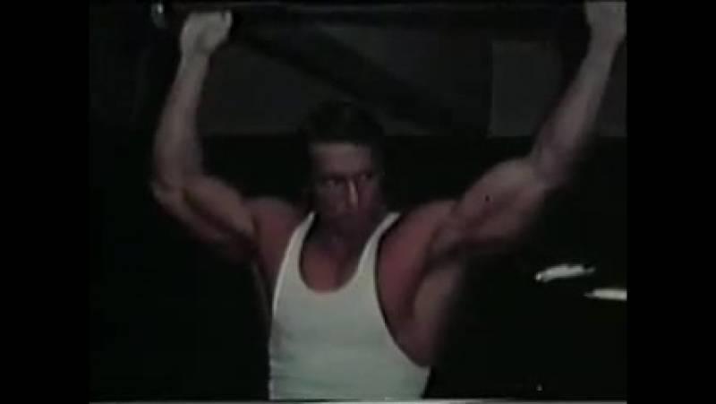 Тренировка грудных мышц арнольда шварценеггера: как тренировал грудь легендарный атлет?