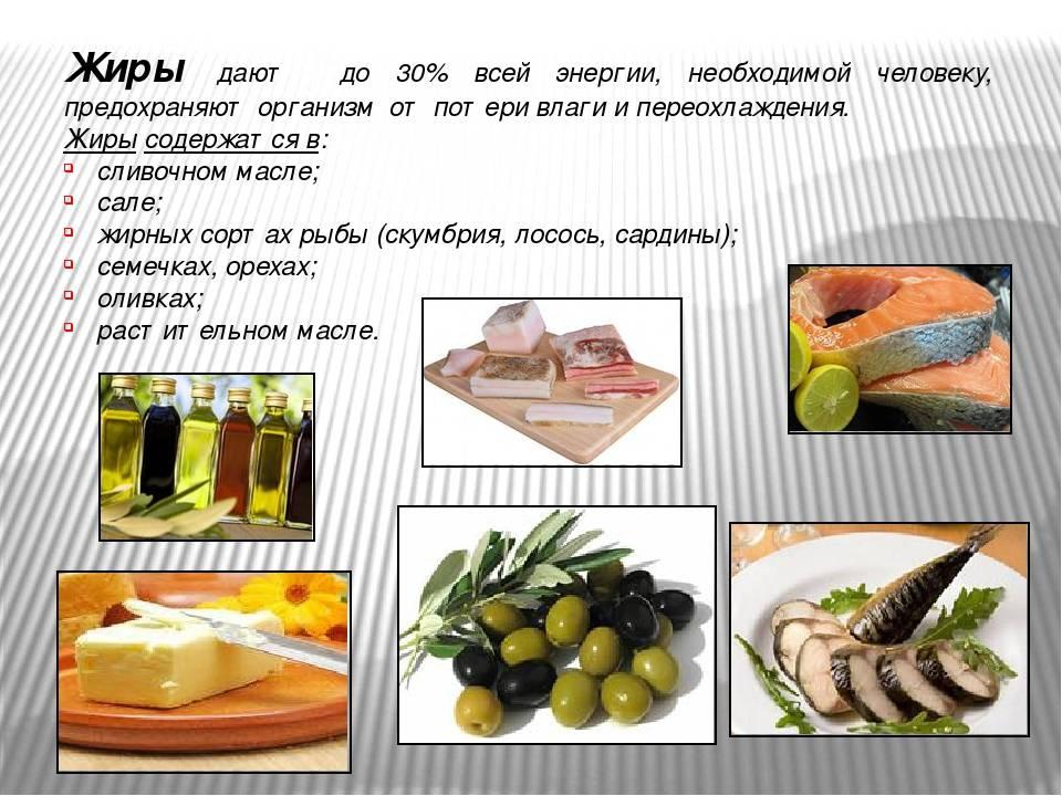 Польза жиров для здоровья - solo mag