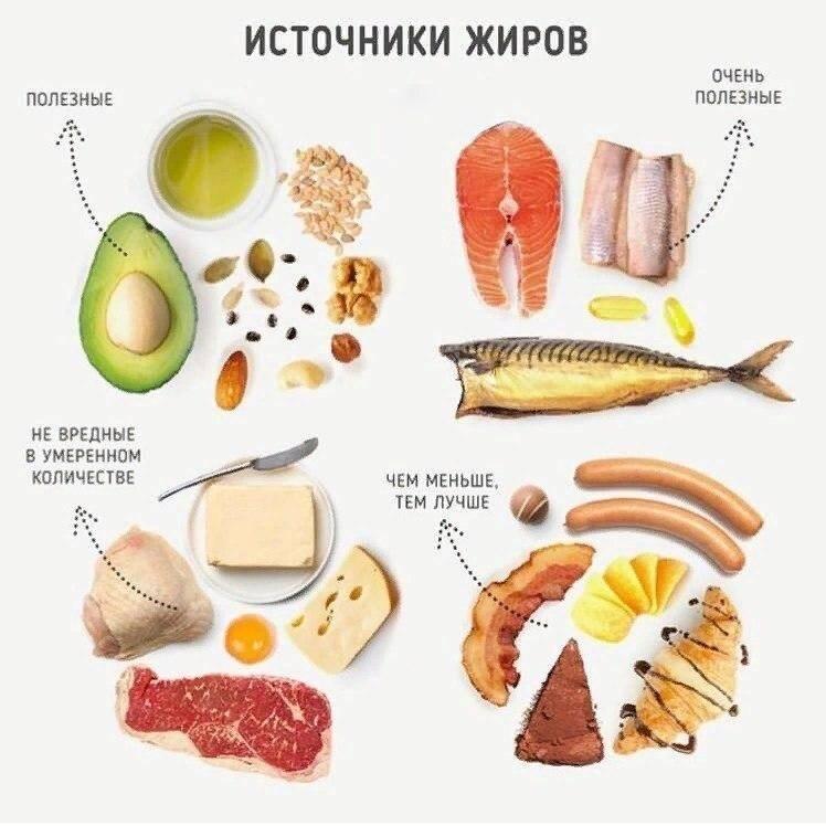 Жировая ткань: роль жира в организме человека