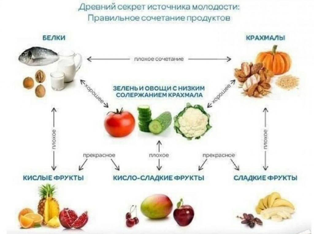 Таблица совместимости продуктов: правильные и неправильные сочетания