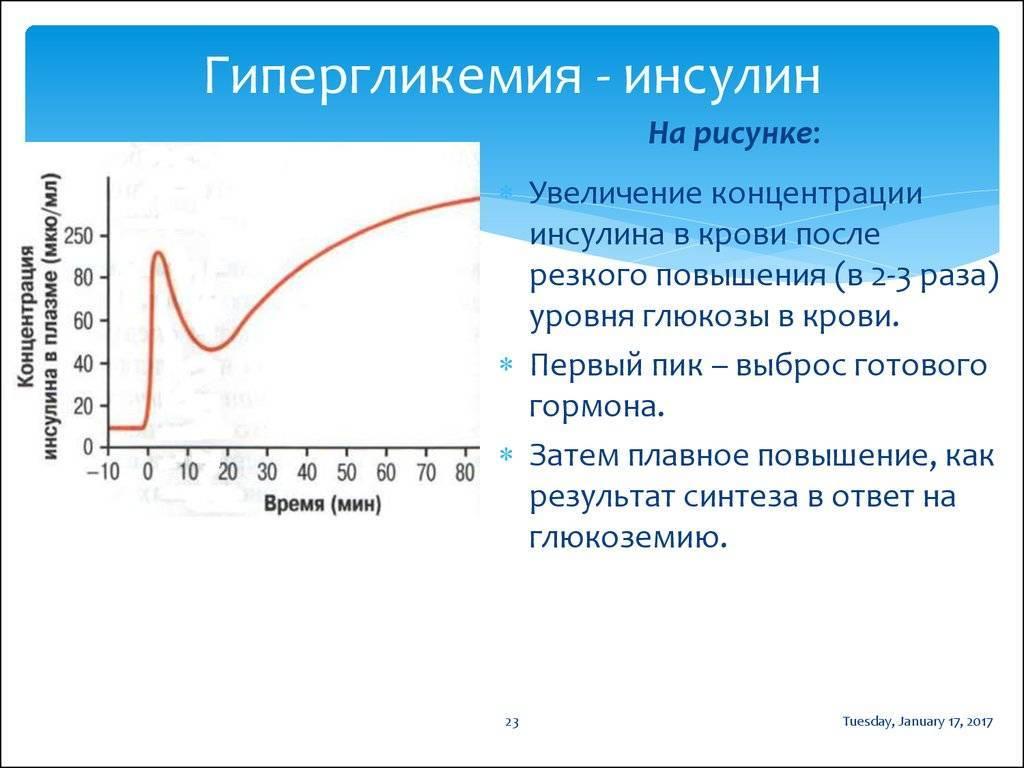 Ожирение и гормон лептин - fitlabs / ирина брехт